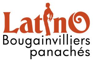 Latino les bougainvilliers panachés